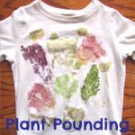 plant pounding 150x150