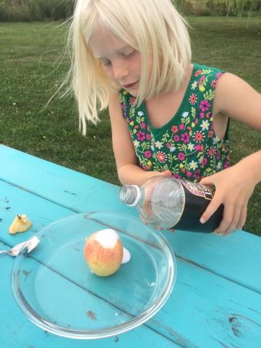 Apple Volcano Experiment