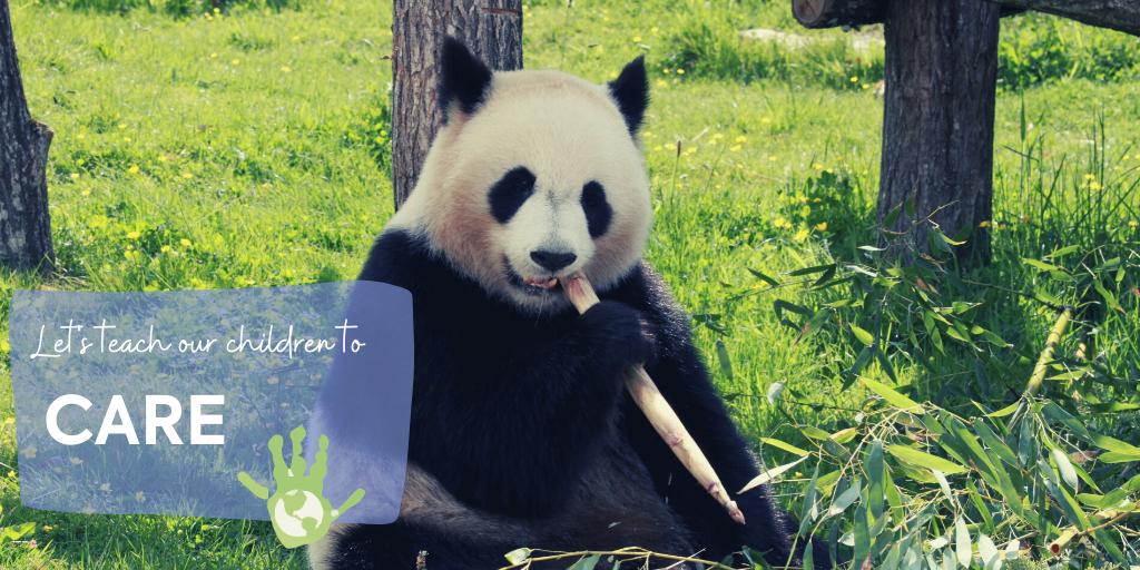 Big black panda resting on a tree